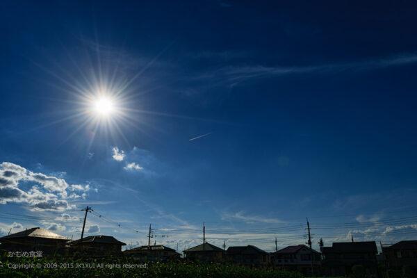 Summer sunshine1